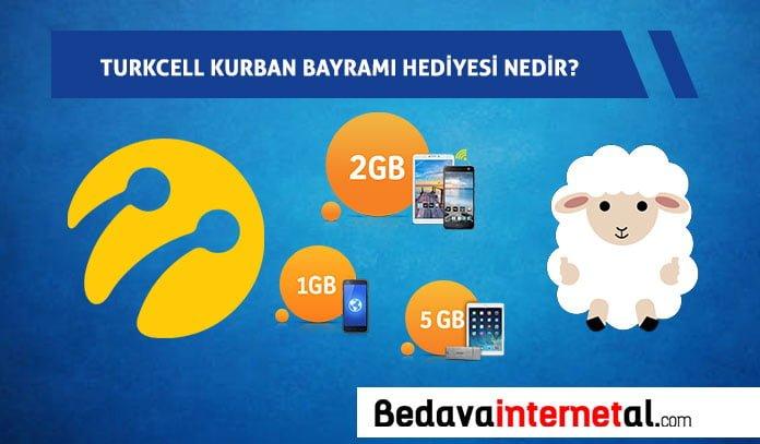 Turkcell internet
